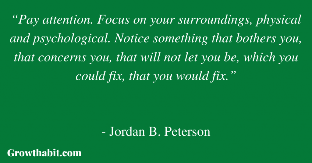 """Jordan B. Peterson Quote 4: """"Pay attention. Focus on your surroundings, physical and psychological. Notice something that bothers you, that concerns you, that will not let you be, which you could fix, that you would fix."""""""